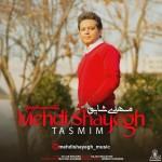 Mehdi Shayegh – Tasmimمهدی شایق          - تصمیم